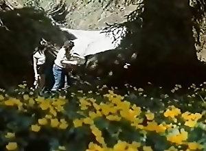 Vintage;HD Videos Gator 596